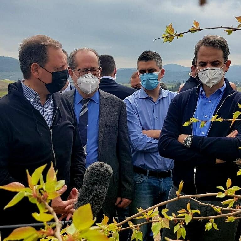 Σπ. Λιβανός για παγετό από Νεμέα: Οι παραγωγοί θα αποζημιωθούν με βάση τα δεδομένα της ειδικής καταστροφής, εκτός κανονισμών του ΕΛΓΑ