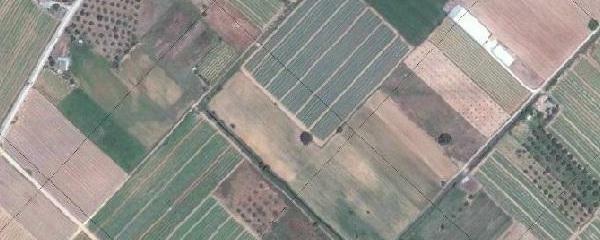 700.000 ευρώ για τα Παράλληλα Έργα Αναδασμού Αγροκτήματος Κρανιώνα από την Π.Ε. Καστοριάς.
