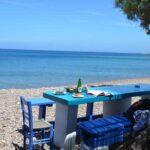 Η επιλογή του φαγητού στις καλοκαιρινές διακοπές, γράφει η Κέλλυ Κοζίνα
