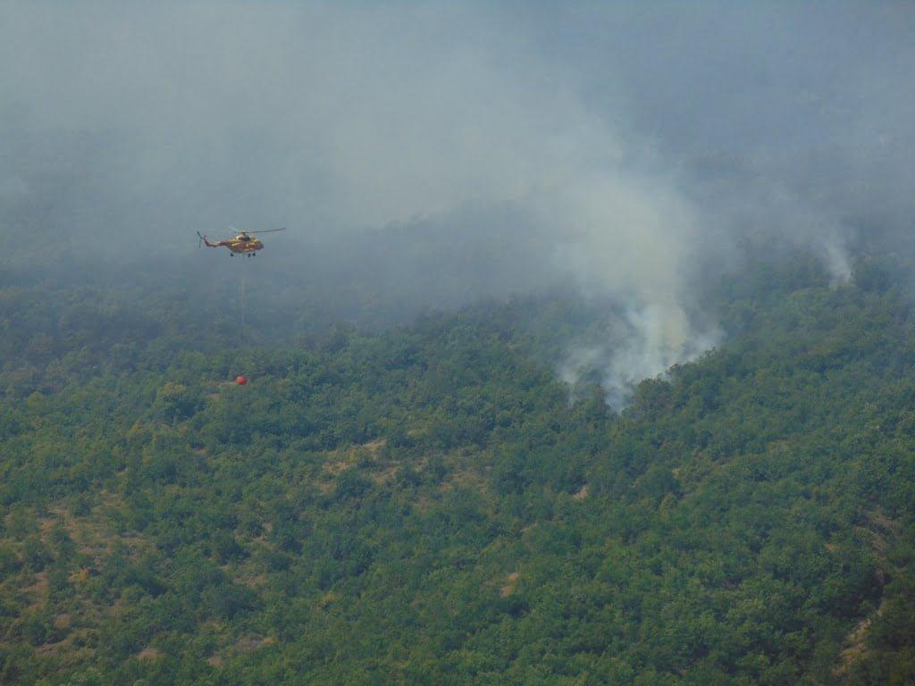 Μαίνεται η πυρκαγιά στο Καρπερό του Δήμου Δεσκάτης, κοντά στα όρια με τον Δήμο Γρεβενών - Στο σημείο της φωτιάς ο Δήμαρχος Γρεβενών Γιώργος Δασταμάνης (Βίντεο+Φωτογραφίες)